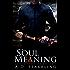 Soul Meaning (A Seventeen Series Novel: An Action Adventure Thriller Book 1)