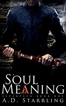 Soul Meaning (A Seventeen Series Novel: An Action Adventure Thriller Book 1) by [Starrling, AD]