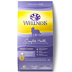 Amazon Com Wellness Complete Health Natural Dry Healthy