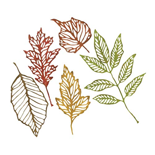 (Sizzix 663094 TH Thinlits Skeleton Leaves, None)