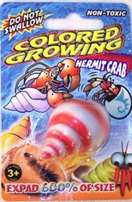 12 Pieces - Growing Toy Hermit Crab - Expand in water to 600% of size - Party Favors - 1 Dozen