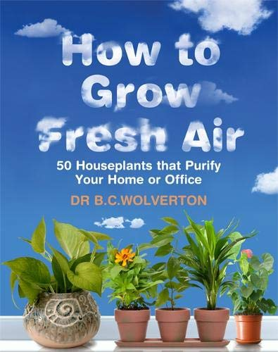 How To Grow Fresh Air: 50 Houseplants That Purify Your Home Or Office: 50 Houseplants That Purify Yo