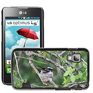 Hot Style Cell Phone PC Hard Case Cover // M00112130 Bird Nest Flycatcher Pied Flycatcher // LG Optimus L5 II Dual E455 / E460