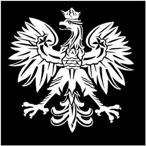 Polish Eagle - Poland Emblem Fun Sticker Bird Symbol, 5 INCH Dye Cut Decal Sticker for Bumpers Windows Cars Laptops ETC