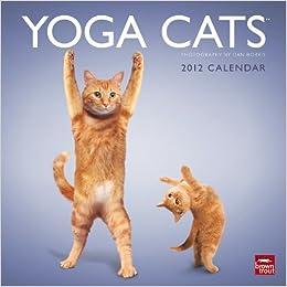 Yoga Cats & Yoga Kittens 2012 Wall Calendar: Amazon.es: Dan ...