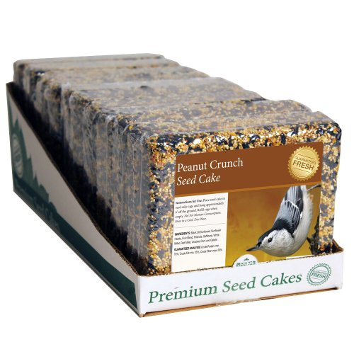 Heath Outdoor Products SC-33 2-Pound Peanut Crunch Seed Cake, (Bird Cakes)