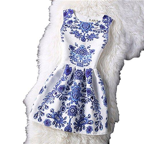 Floral Print a line Mini Dress o Neck Retro Female Spring Party Zipper Dress 2018,Blue,L