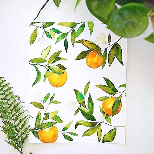 Oranges Blossoms Watercolor Paint Kit Lets Make Art