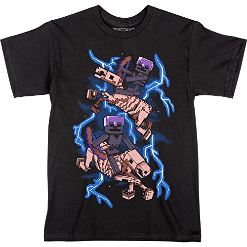- JINX Minecraft Skeleton Riders Boys' Tee Shirt (Black, X-Large)