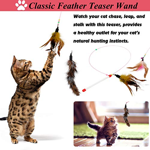 Legendog Cat Toys Set, 22PCS Kitten Toys Variety Cat Toy Pack Cat Toys Collection Kittten Toys Variety Pack Including Cat Feather Teaser Wand, Catnip Toy, Mice, Colorful Balls, Bells and so on for Cat 5
