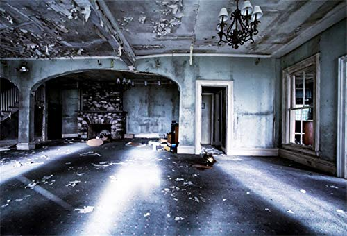 Leyiyi 5x3ft Gothic Halloween Backdrop Abandoned House Ghost Room Vintage Building Empty Living Room Gloomy Sunset Photography Background Horror Costume Carnival Photo Studio Prop Vinyl Banner]()
