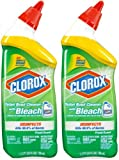 Clorox Toilet Bowl Cleaner - Fresh - 24 Review and Comparison