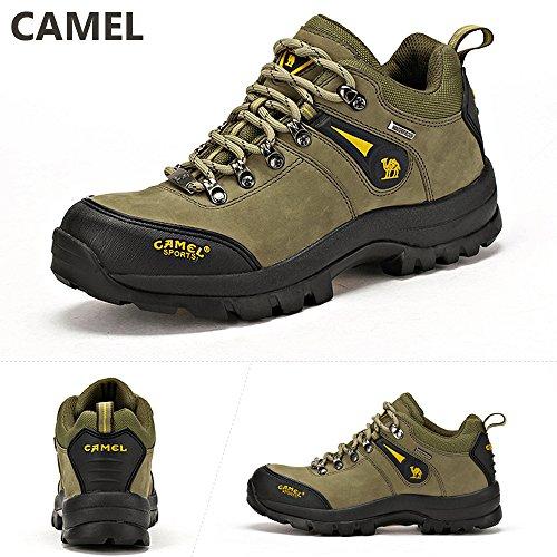 Scarpe Esterno Professionale Sneaker Verde Traspiranti Per Outdoor Da Antiscivolo Uomo Low Trekking Camel top ZvdRqTZ