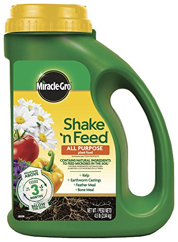 - Miracle-Gro Shake 'N Feed All Purpose Plant Food, 4.5 lbs, Covers up to 180 sq. ft.