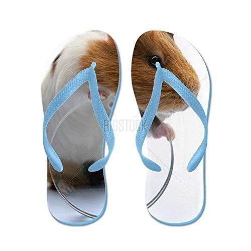 Cafepress Cavia - Flip Flops, Grappige String Sandalen, Strand Sandalen Caribbean Blue