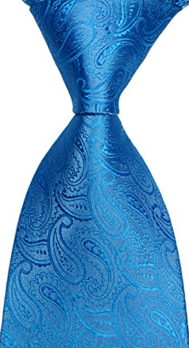 Pisces.goods New Classic Paisley JACQUARD WOVEN Men's Tie Necktie (Light (New Mens Paisley Light)