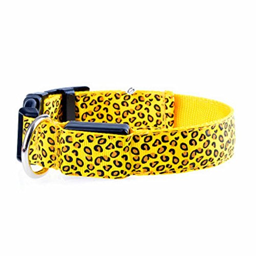 Sassy Dog Wear Adjustable Dog Collar