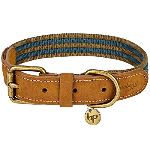 Blueberry Pet 8 Colors Polyester Fabric Webbing and Soft Genuine Leather 3/4 Wide Dog Collar in Navy and Olive, Small, Neck 12-15, Adjustable Collars for Dogs
