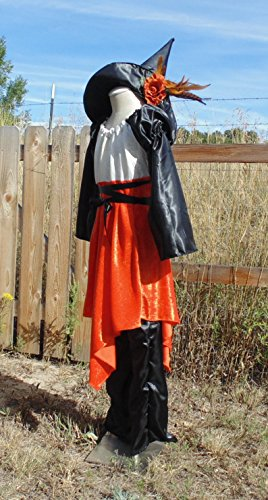 Teen Girls 10-14 Pink and Orange Witch with Matching Hat ! by Fru Fru and Feathers Costumes & Gifts