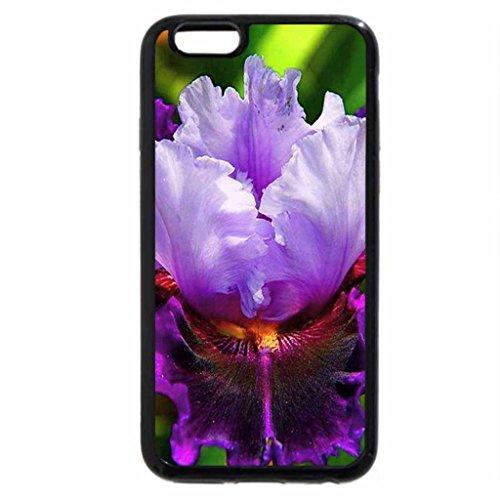 iPhone 6S Plus Case, iPhone 6 Plus Case, The beautiful Iris