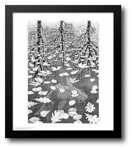Three Worlds 15x18 Framed Art Print by Escher, M.C.