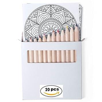 DISOK Lote de 20 Set Mandalas con 12 Lápices y 12 Láminas Mandalas Incluidas - Manualidades Creativas para Dibujar y Colorear con relajantes Motivos ...