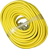 ATE Pro. USA 70061 Extension Cord, 100', 10 Gauge, 3-Prong
