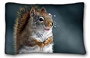 Custom Cotton & Polyester Soft ( Animals squirrel tails snout snow ) Custom Zippered Pillow Case 20x30 inches(one sides) from Surprise you suitable for King-bed