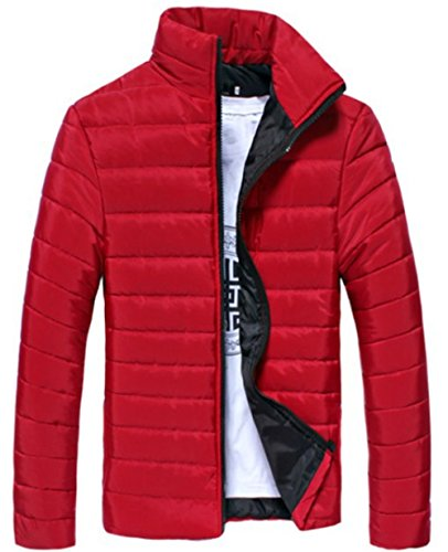 Quilted Riding Jacket - 9