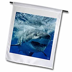 Kike Calvo Shark - Great White Shark - 18 x 27 inch Garden Flag (fl_10587_2)