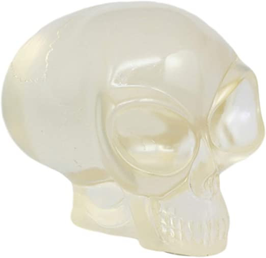 Clear Translucent Skull Collectible Figurine