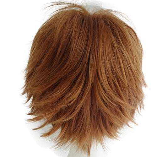 Alacos Unisex Cosplay Short Straight Hair Wig Girl Boy Anime Con Party Dress Wigs Brown Wig+ Free Wig Cap