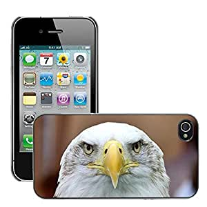 Hot Style Cell Phone PC Hard Case Cover // M00112637 White Tailed Eagle Adler Bald Eagle // Apple iPhone 4 4S 4G