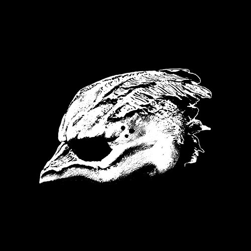 Legend of the Seagullmen [Explicit]