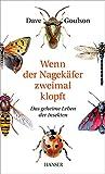 Wenn der Nagekäfer zweimal klopft: Das geheime Leben der Insekten
