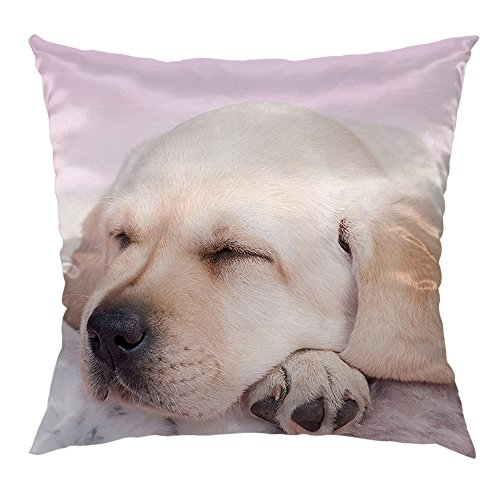 - HGOD DESIGNS Dog Pillows Decorative Throw Pillow Cover Case with Sleeping Labrador Puppy Satin Sofa Cushion Cover Throw Pillow 18 x 18 inch Pillowcase,Pink Brown