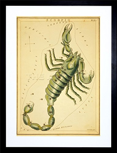 9x7 '' PAINTING STAR MAP SCORPIO SCORPION CONSTELLATION FRAMED ART PRINT F97X763