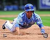 "Whit Merrifield Kansas City Royals 2016 MLB Action Photo (Size: 8"" x 10"")"