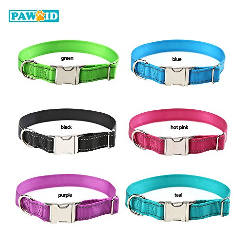 Personalized Buckle Collar - 6