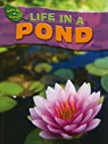 Life in a Pond, Adam Hibbert, 1433934124
