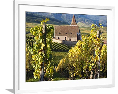 ArtEdge Hunawihr, Alsatian Wine Route, Alsace Region, Haut-Rhin, France by Walter Bibikow, White Matted Wall Art Framed Print, 24 x 32, Soft -