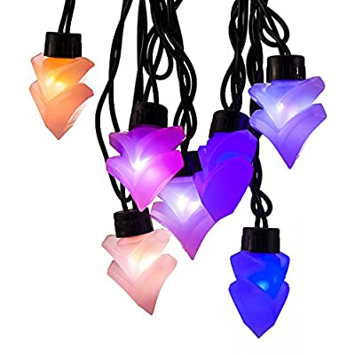 DB.WOR LED Light String Fairy Light for Garden Parties Weddings Christmas Indoor Outdoor Decoration Festivals-Seven Colors Changing Applies
