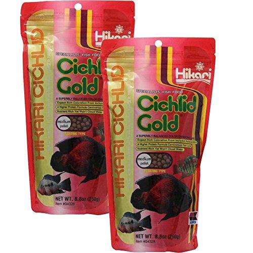 Hikari 8.8-Ounce Cichlid Gold Floating Pellets for Pets, Medium 2-Pack