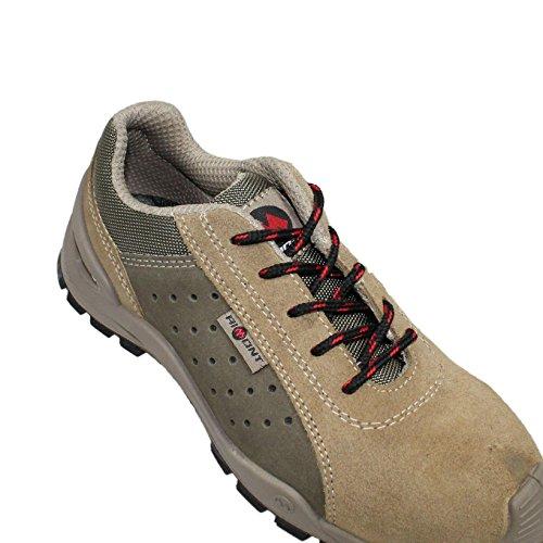 Aimont s1P chaussures de sécurité chaussures plates rex aimont dominus