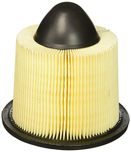 Motorcraft FA1632B3 Air Cleaner Element Assembly