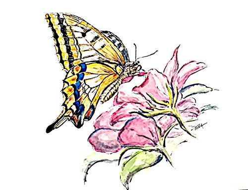 - Butterfly Series #1, Original Watercolor Painting