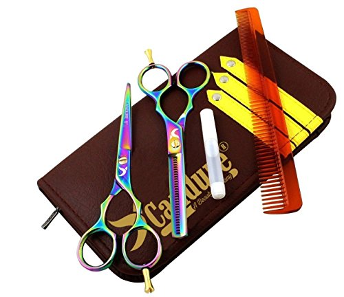 Review Hairdressing Scissor Shears for