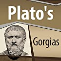 Plato's Gorgias Audiobook by  Plato Narrated by Ray Childs