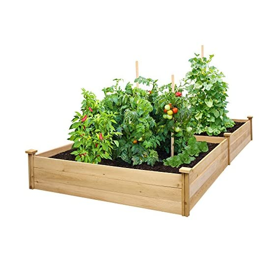 """Greenes Fence RCEC6T21B Best Value Cedar Raised Garden Bed Planter, 48"""" W x 96"""" L x 10.5"""" H 1 Greenes value raised garden bed: Greenes Fence value line of Cedar raised garden beds allows you to create an open-bottom frame to support your garden. Raised garden beds give your plants the room They need to grow in the location of your choice. Our cedar frame is made in the USA of North American Cedar and left untreated, which means it is organic and safe to grow vegetables, herbs, and fruits in. Value Line: with boards that are unsanded and thinner than our original and premium lines, Our value raised garden beds allow you to have a beautiful garden without the premium price. Easy to set up: Greenes Fence uses dovetail interlocking joints, which makes assembly a breeze. Each board slides into the corner posts without tools to form a secure open-bottom garden frame. Every corner post is routed on all four sides for easy assembly and expansion. The decorative Tops can be added to each post using a screwdriver."""