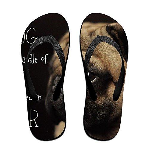 Unisex Summer Pug Dog Beach Slippers Home Flip-Flop Flat Thong Sandal (Mens Sheepskin Pug Boots)